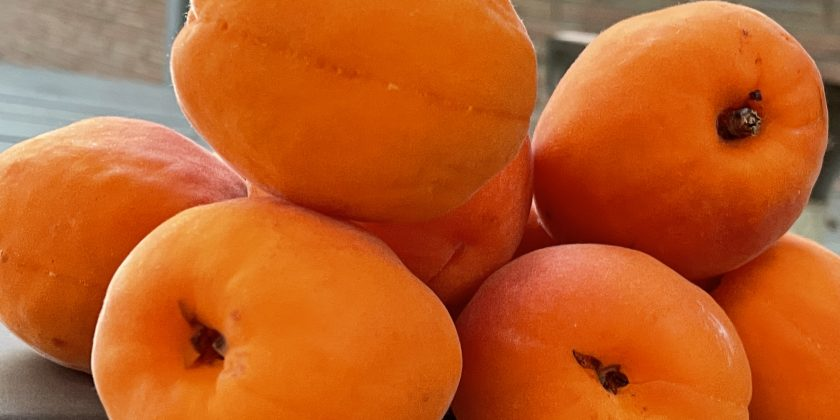 Cherries, Apricots, and More!